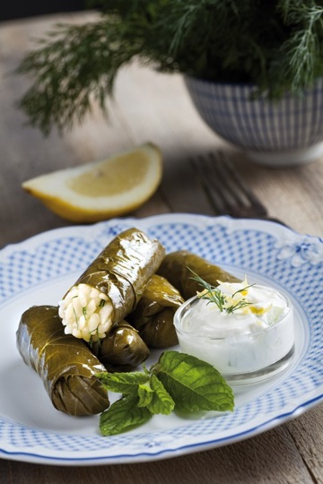 Stuffed vine leaves with yoghurt